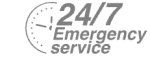 24/7 Emergency Service Pest Control in Upper Edmonton, N18. Call Now! 020 8166 9746