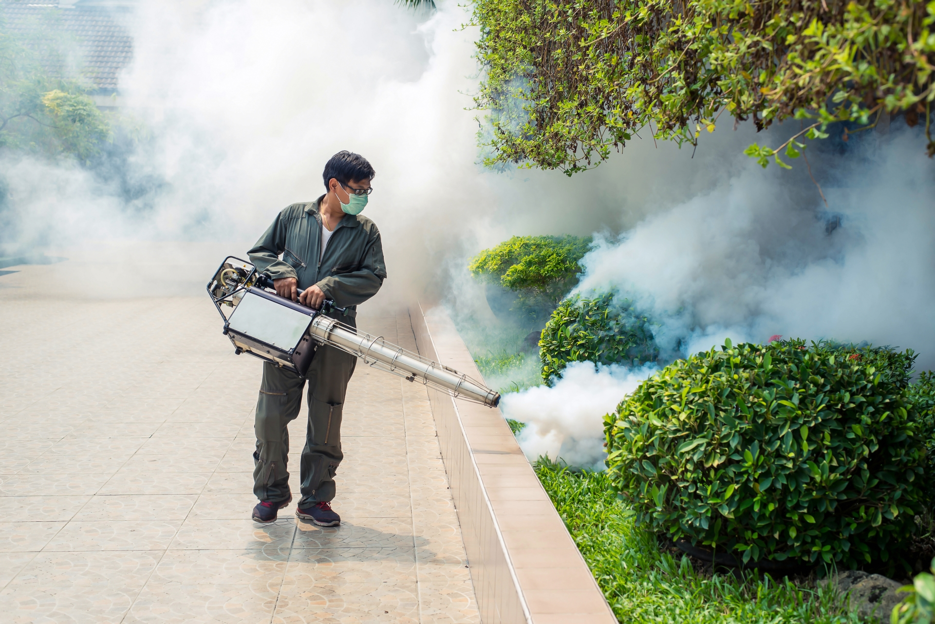 Bug Control, Pest Control in Upper Edmonton, N18. Call Now 020 8166 9746
